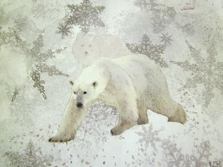 "0,1 m Baumwolldruck ""Polar"" 280 cm br."