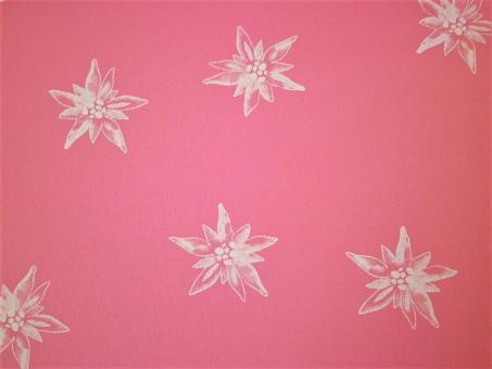 """0,1 m Trachten-Druckstoff  """"Edelweiss"""" rosa ca. 150 cm br."""